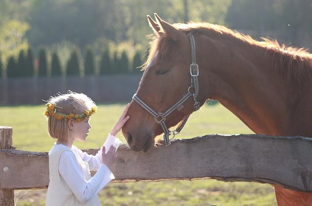 beneficio-de-la-equitacion-para-ninos