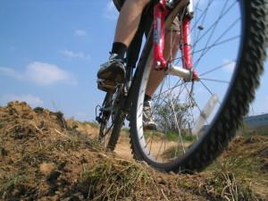 ¿Por qué practicar rutas de bicicleta en familia en Andalucía?