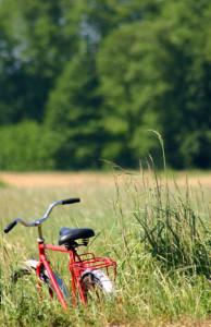 Cinco rutas de bicicleta en familia en Andalucía